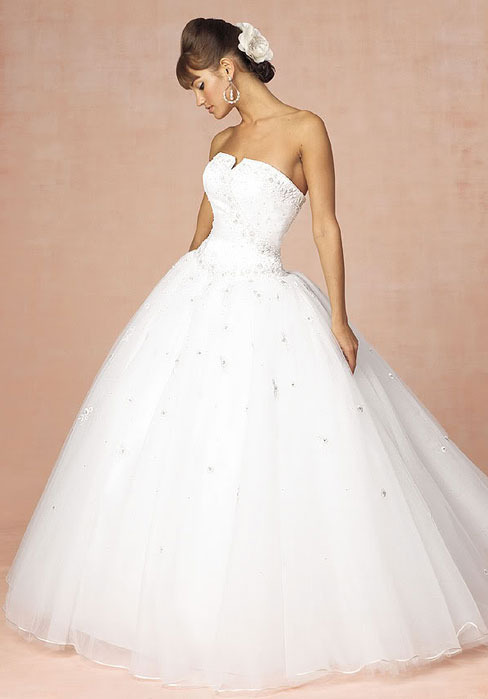 http://www.newdress2014.com/organza-chapel-train-ball-gown-princess-strapless-wedding-dress-p-111687.html